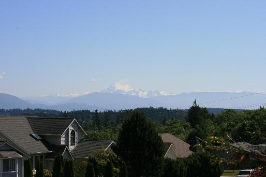 Autumn Leaves Bed & Breakfast: View of Mt. Baker from the house