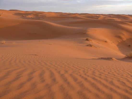 Guest House Merzouga: dunes