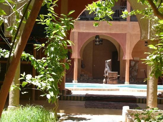Guest House Merzouga: garden