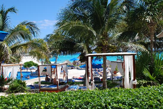 The Reef Playacar: Sunbeds