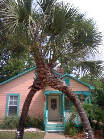 Tiki Palms Inn : Entrance to Tiki Palms B&B