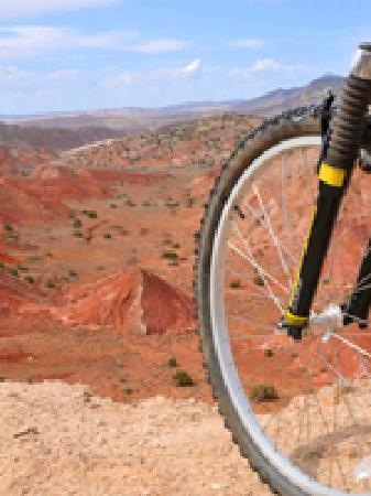 New Mexico Mountain Bike Tours