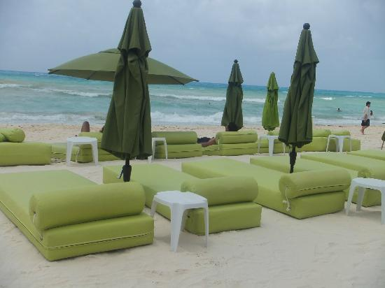 Hotel Colibri Beach Beautiful Green Gives You Good Vibrations