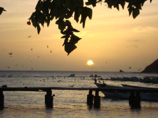 Posada Tropicana: Atardecer en Los Roques