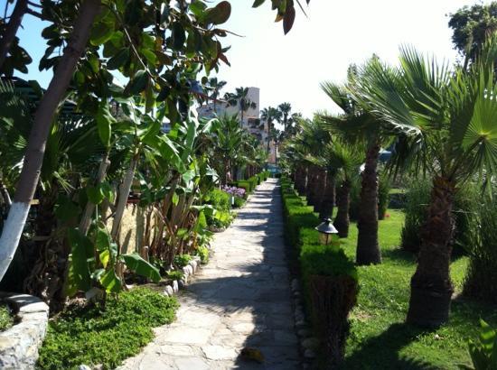 Hotel Iz Flower Side Beach: the garden path to the beach