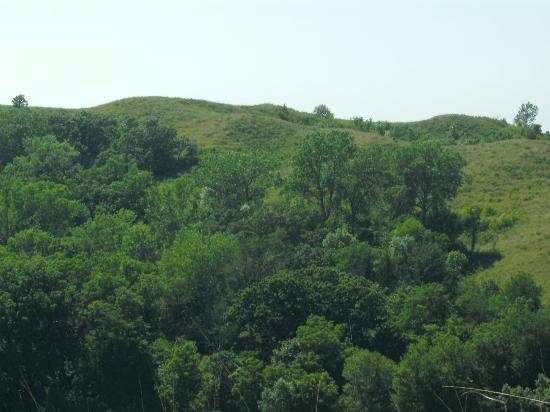 Loess Hills Scenic Byway: Oak forests - Sylvan-Runkel Preserve
