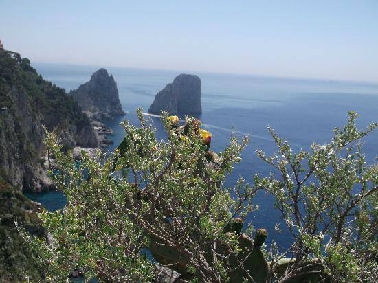 Sorrento top driver tours : Capri