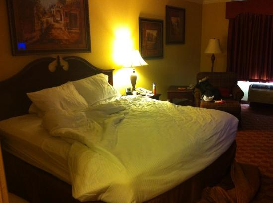 BEST WESTERN Longview: comfortable bed