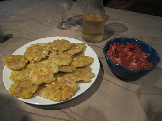 Casita Corcovado: The Endresult of my Cooking class, Patacones