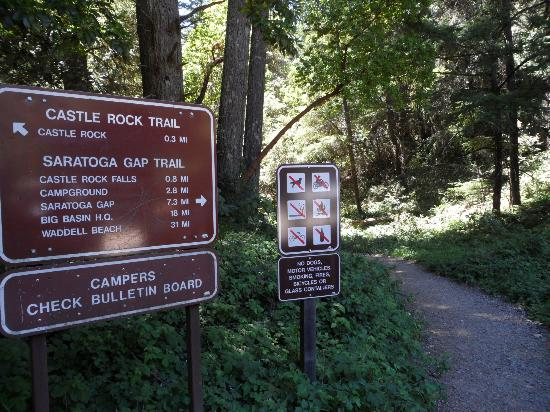 Sign for trail walk to Castle Rock Falls
