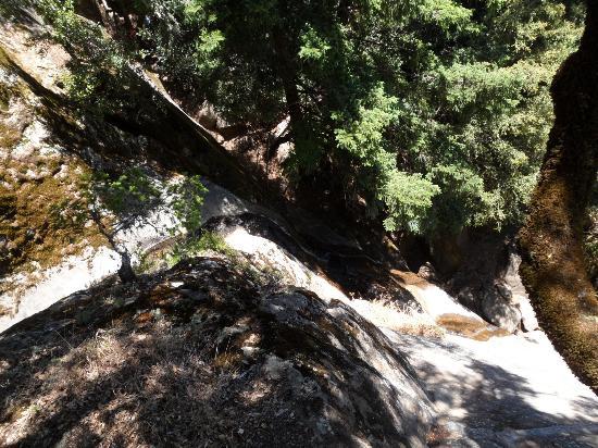 Castle Rock Falls 사진