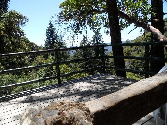 Castle Rock Falls : Deck to view scenery and falls underneath