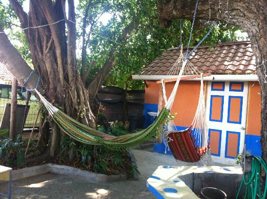 Hostal Plaza Pedasi: Hammock in the backyard