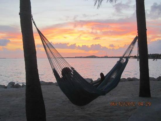 Ibis Bay Beach Resort: In the hammock watching the sunrise