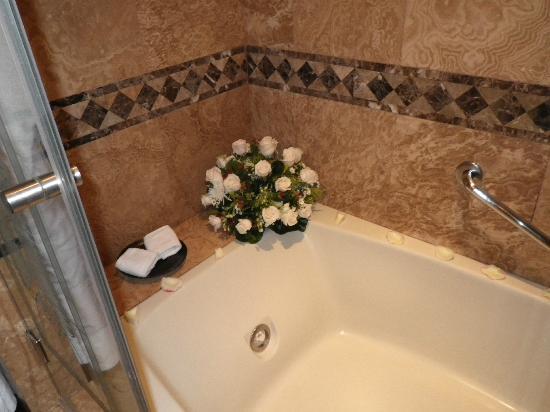 Hotel Plaza Grande: Tub