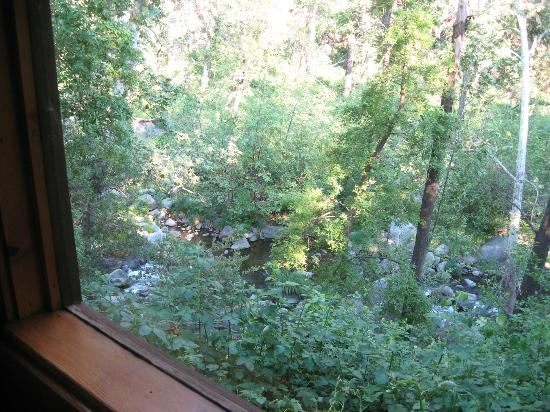 Garland's Oak Creek Lodge: view out cabin #1's large window toward the creek below.