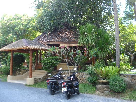 Chaweng Cabana Resort: Front of Hotel