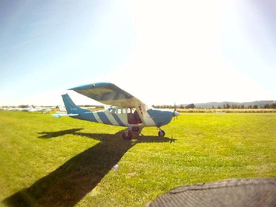 Skydive Yarra Valley: Plane