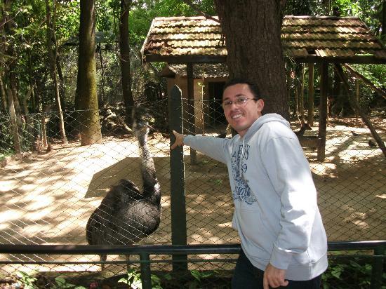 Campinas, SP: Passeio pelo Zoológico do Bosque