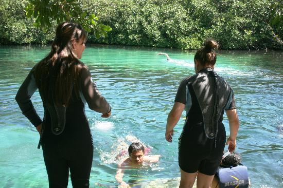 Divers UnderGround: CASA CENOTE
