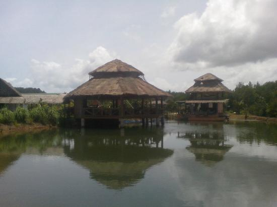 Amazon Bungalow: lake