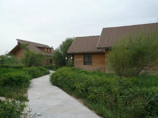 Jinsha Island Leisure Villa Resort: villas