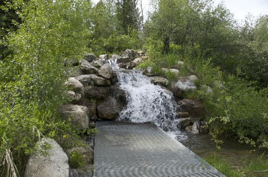 Laurance Rockefeller Preserve: platform to walk right up to a small waterfall