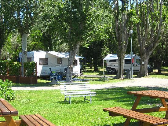 Camping La Spiaggia: Le piazzole