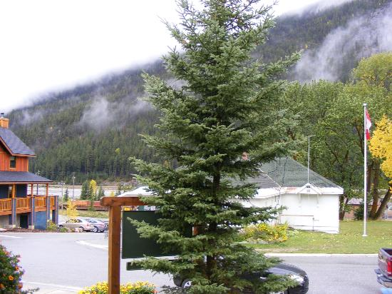 Canadian Rockies Inn: Entrance to field