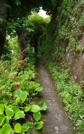 Hotel Sintra Jardim: The Garden