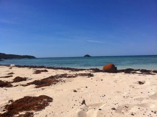 Bay of Plenty Lodge: My private beach