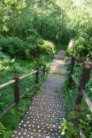 Bali Eco Village: Steps to Standard Room
