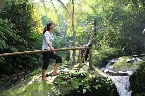 Bali Eco Village: Walk to the river for a swim