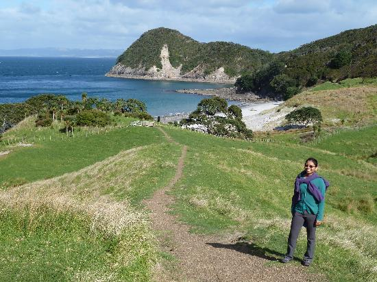 Bream Head Coast Walks: Smugglers Bay