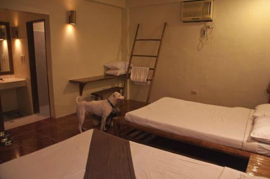 La Luz Beach Resort: Pets are allowed only in Premiere room