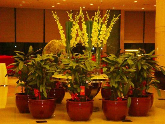Fifth Ring Hotel Beijing: Interiors