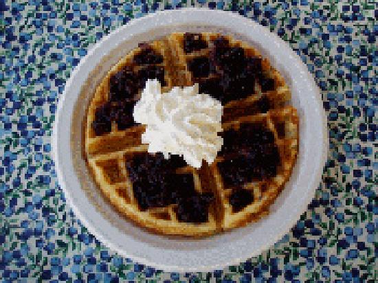 Vacationland Inn: Waffles