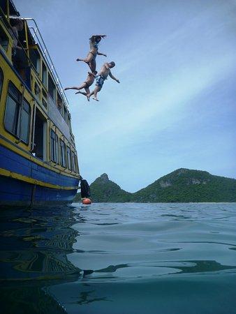 Blue Stars Kayaking : Fun after the snorkelling and kayaking