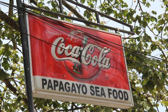 Papagayo Pura Vida: Can't Miss the Sign!