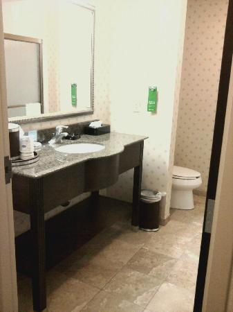 Hampton Inn & Suites Cleveland-Mentor : Bathroom