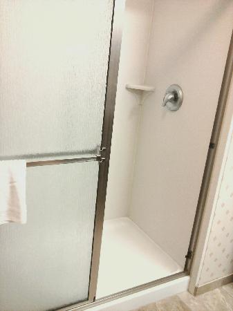 Hampton Inn & Suites Cleveland-Mentor : Shower