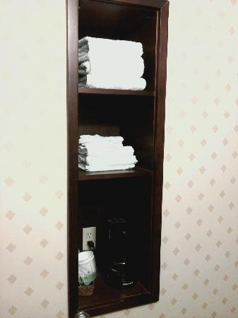 Hampton Inn & Suites Cleveland-Mentor : Shelving in Bathroom