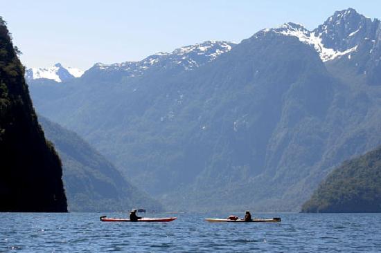 Alsur Expediciones: Paddling Quintupeo fjord Pumalin Park