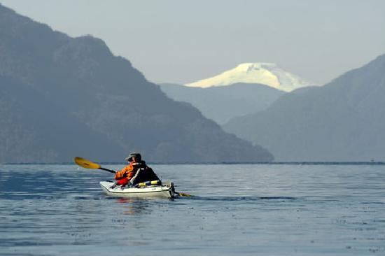 Alsur Expediciones: Paddling Comau fjord Pumalin Park