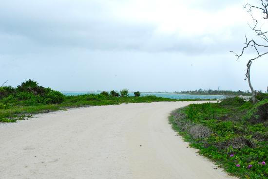 Mayan Beach Garden: Beach road towards Inn.