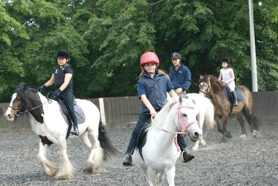 Lee Valley Regional Park: Explore Lee Valley on horseback
