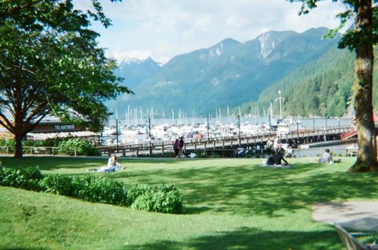 Horseshoe Bay Motel: What a View!