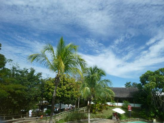 Rio Quente Suite & Flat III: Sun adn green area