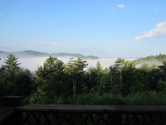 Leatherwood Mountains : View outside the master bedroom - just beautiful.  MB has sliding glass doors that open on to de