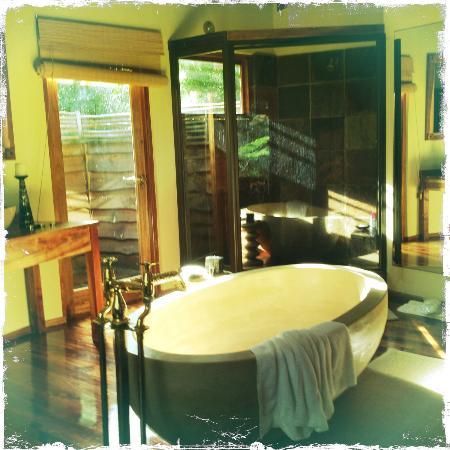 Tsala Treetop Lodge: Bathtub : )